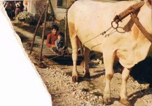 esempio di straulo, tratto da una foto d'epoca scattata a Caiazzo